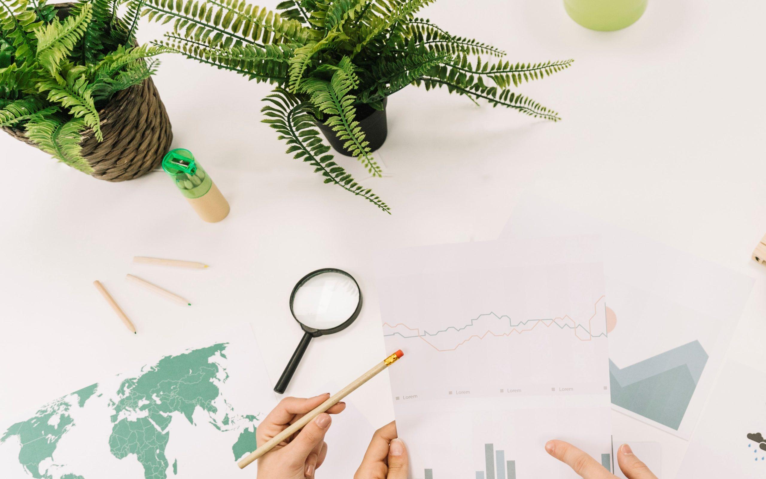 Elaboración del informe no financiero y diversidad ley 2021